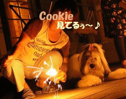 ママとCookie