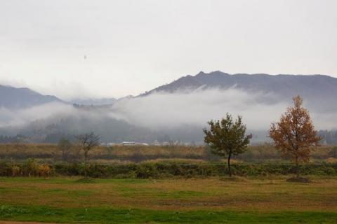 霧にけむる