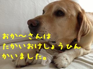 1_20130906142136bbc.jpg