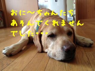 1_20130909144013f49.jpg