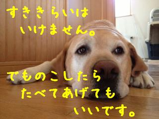 1_201309181510589dc.jpg