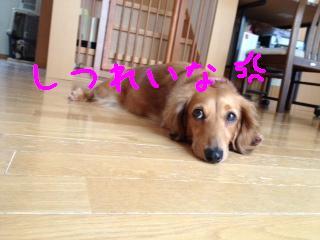 ___20130708144819.jpg