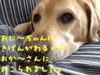 ___20130807140341698.jpg