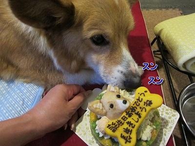 ケーキ (4)