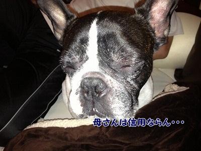 寝落ち (1)