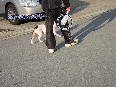 散歩 (6)