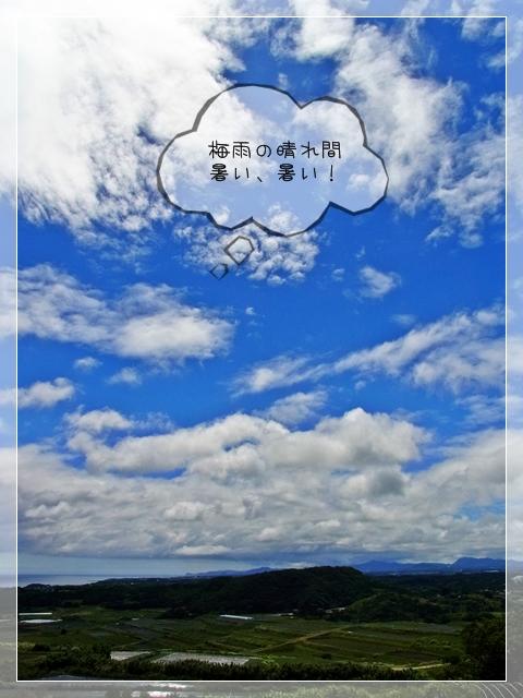 梅雨の過ごし方02