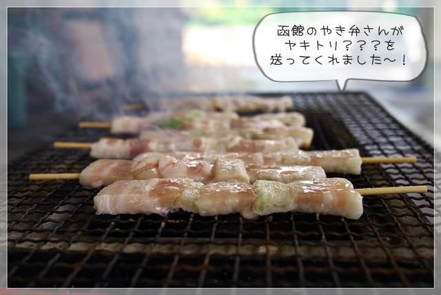 夏生活C30