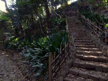 崖線 名主の滝公園(北区)
