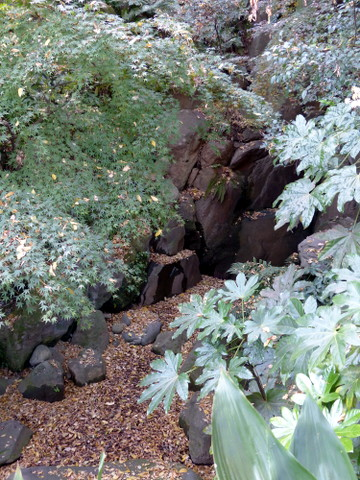 女滝 名主の滝公園(北区)