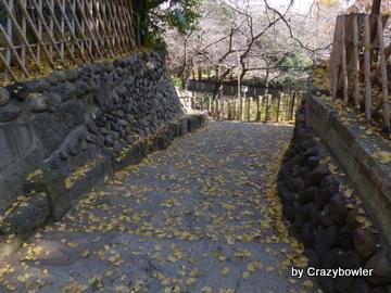王子神社から音無親水公園へ(北区)