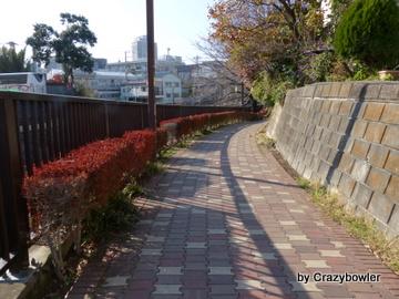 石神井川(北区)