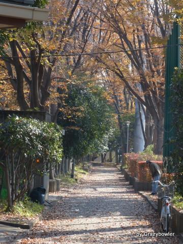 東京都北区中央公園