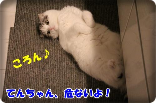 IMG_2483-001.jpg