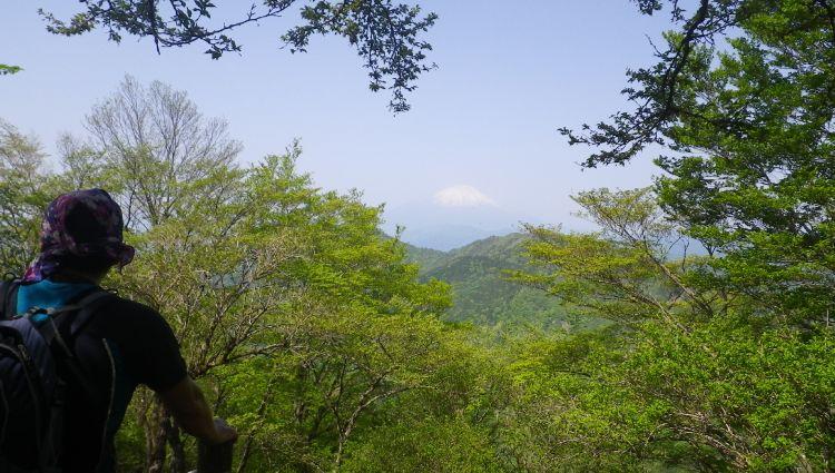2013鍋割山05