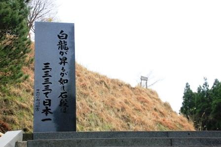 IMG_8918.jpg