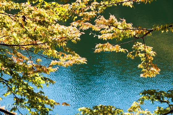 湖面に輝く紅葉