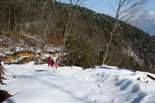 初雪遊びは11