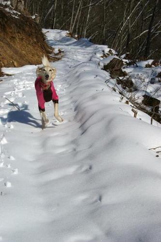 初雪遊びは16