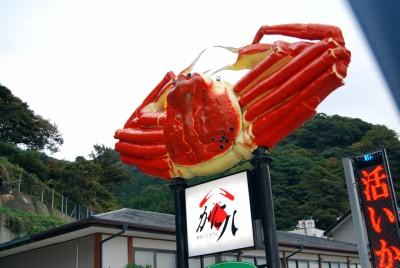 kani_20131010002712082.jpg