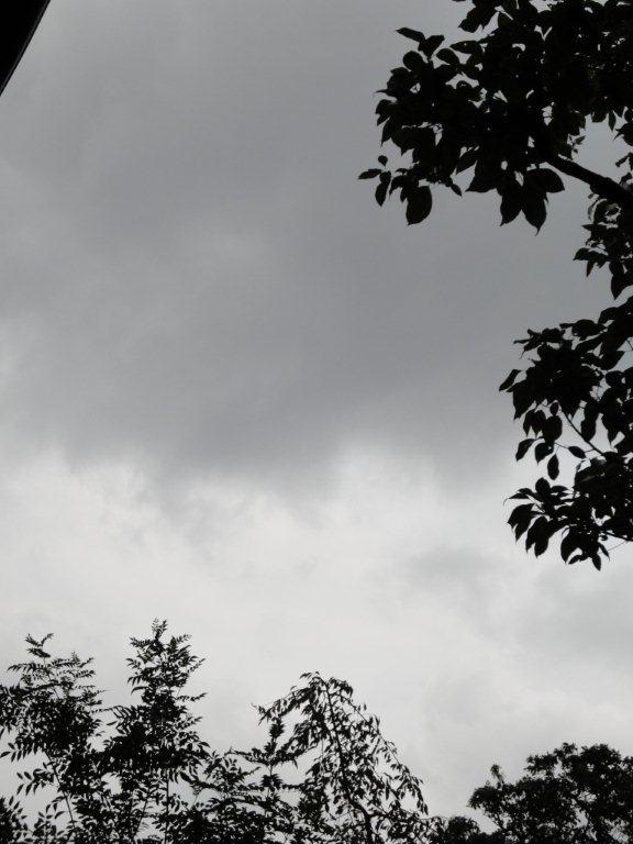 台風の~1