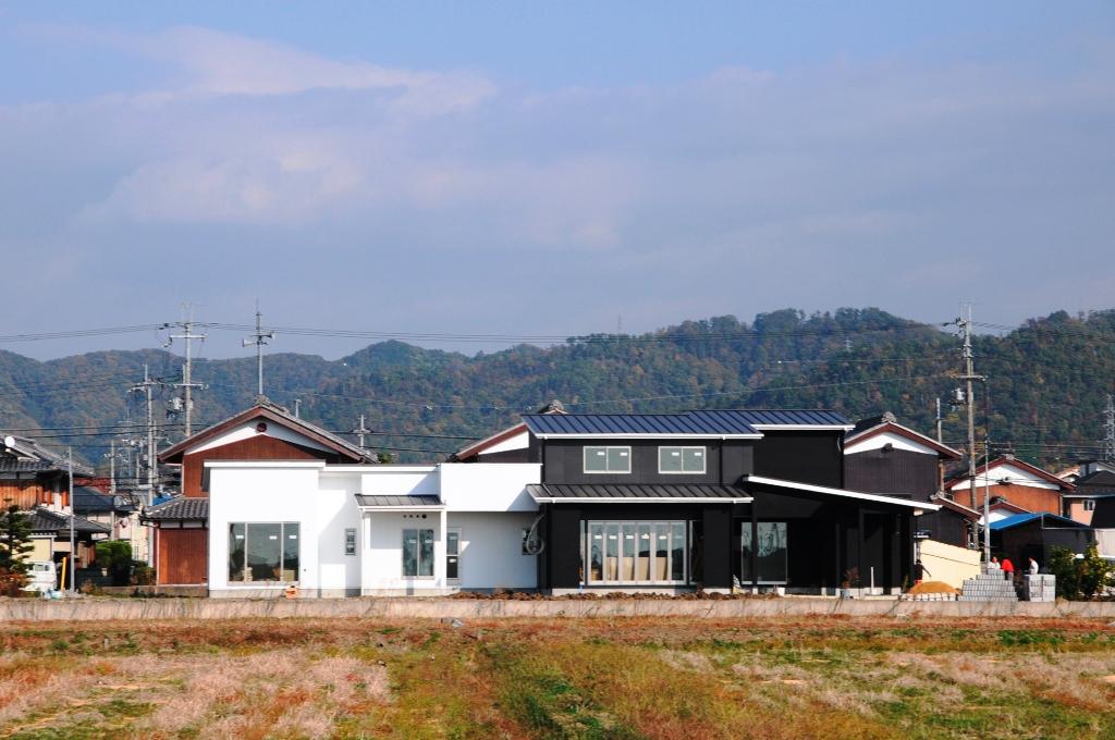 mitamura101.jpg