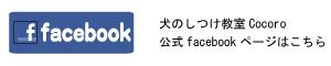 facebook_blog.jpg