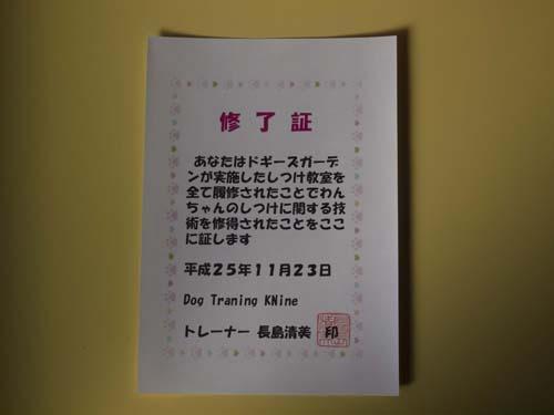 S10_20131124.jpg