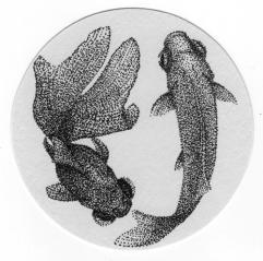 金魚mono
