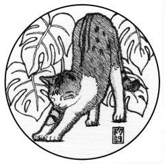 猫コースター