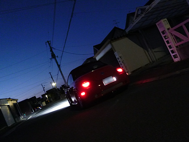 P1090264.jpg