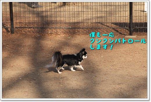 2_201402022131267ff.jpg