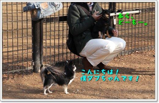 4_20140202213129b88.jpg