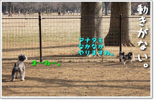 6_20140202213640b3c.jpg