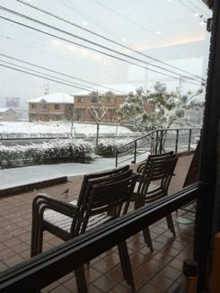雪のスタバ