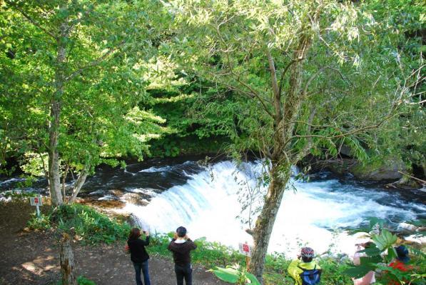 清里町  さくらの滝