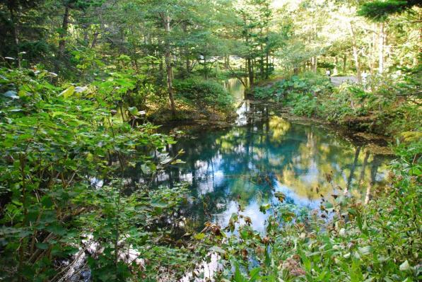 清里町  神の子池