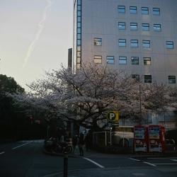 2014112513.jpg