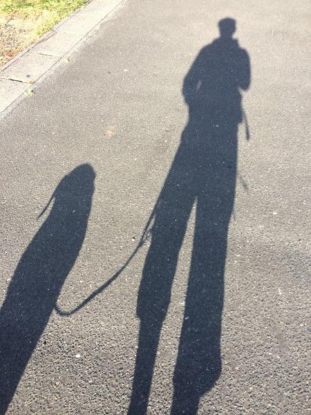 画像2014.10.24 001