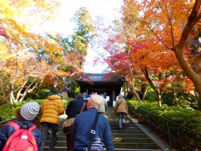 円覚寺入口 2013 12・1