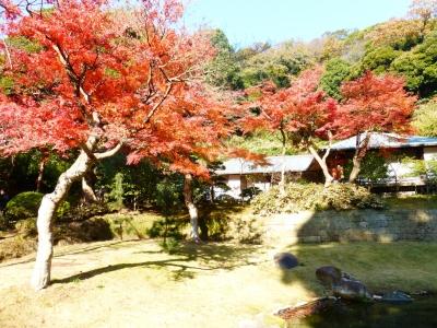 円覚寺⑤ 2013 12・2