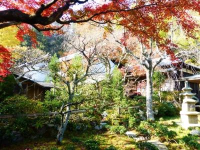 東慶寺① 2013 12・2