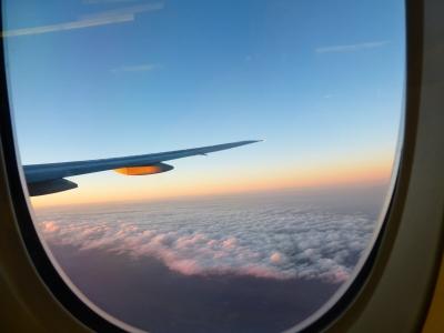 帰りの飛行機にて 2013 12・2