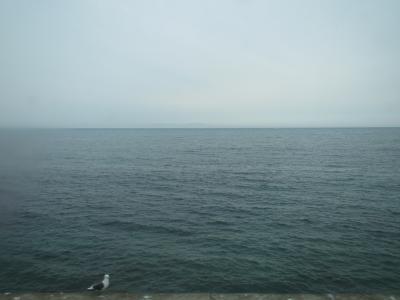 車窓太平洋