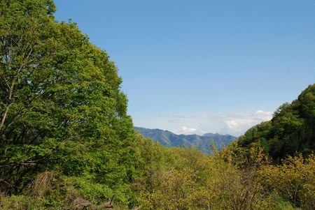 青空と新緑と秩父連峰と