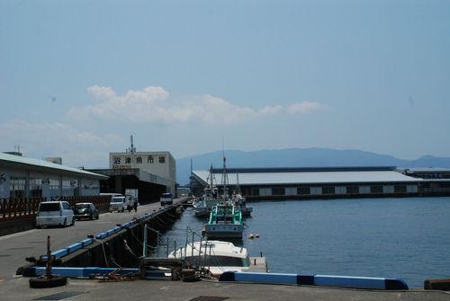 沼津魚市場15