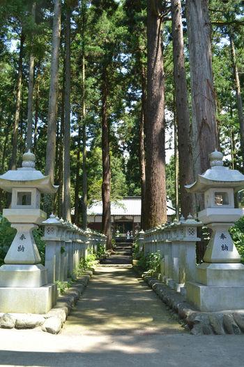 山宮浅間神社6