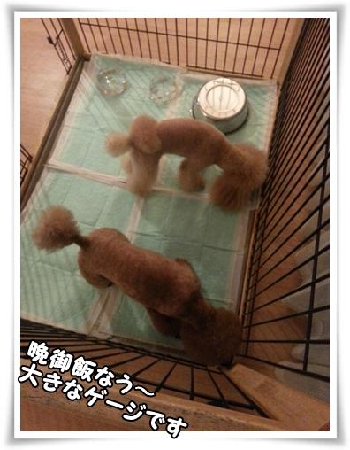 2013-11-02-18-09-53_photo.jpg