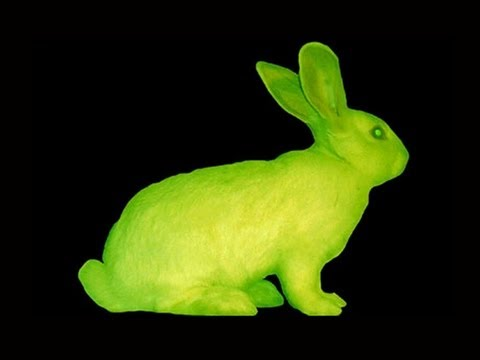 fluorescent_rabbits[1]