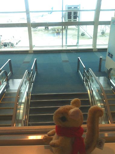 00IMG_2934airport.jpg